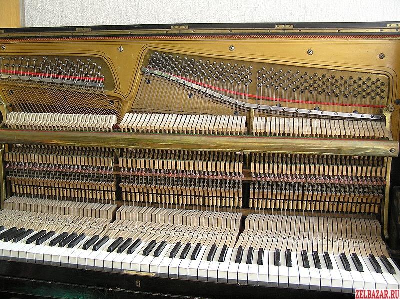 Настройка пианино (Зеленоград,  Солнечногорск,  Клин)