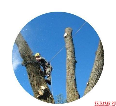 Удаление деревьев.  Спилить дерево