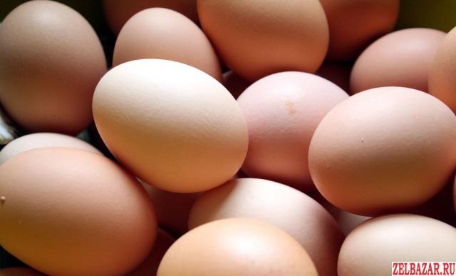 Яйца куриные домашние деревенские (мкр Сходня)