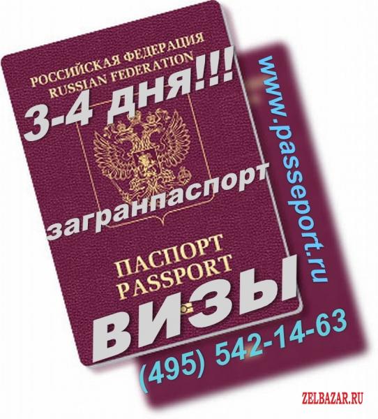 Загранпаспорт,  визы