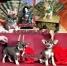 Чихуахуа уникальные щенки VIP и эконом класса