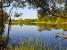 Продам участок 30, 3 Га с прудом,  водопадами,  ручьями