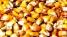 Продажа кукурузы целая и колотая